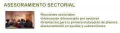 ASESORAMIENTO_SECTORIAL.jpg