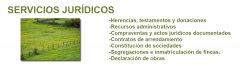 SERVICIOS_JURIDICOS.jpg